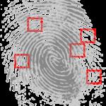 fingerprint-146242_480